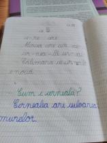 img_20161123_134530